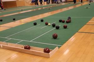 Bowls-stævne 6 februar 2016