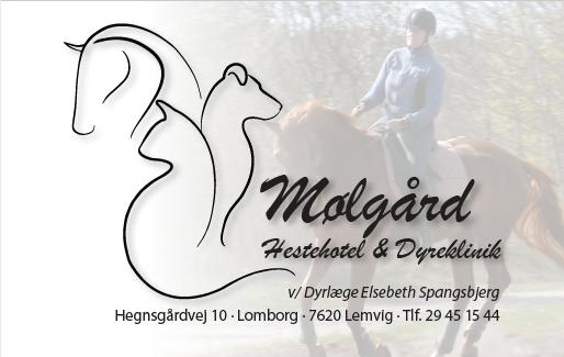 Mølgård Hestehotel & Dyreklinik